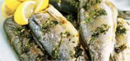 Grey mullet seasoned with Prosecco vinegar